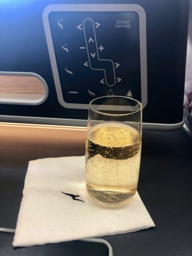 Champagne, and seat buttons